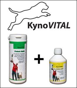 KynoVital Kombiangebot Protect JUNIOR