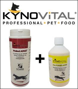 KynoVital Kombipaket Protect ADULT