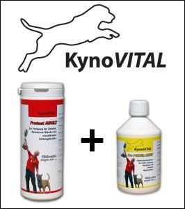 KynoVital Protect Kombiangebot Protect ADULT